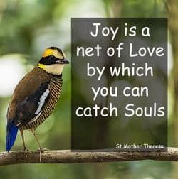 "Quote: ""Joy is a net of love..."""