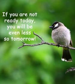 "Quotation ""If you are not ready today..."""