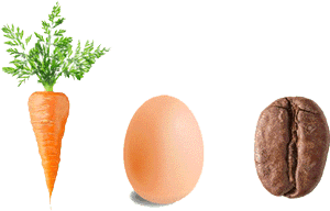 A carrot, egg and a coffee bean.