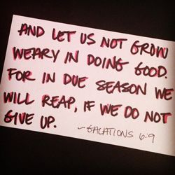 "Quote: ""And let us not..."""