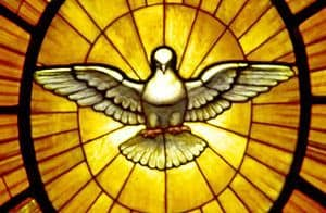 Image of Dove - emblem of the Holy Spirit.