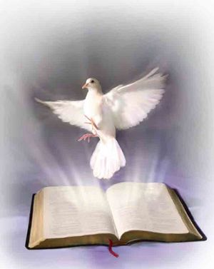 Sketch of a dove hovering above a Bible