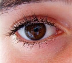 Image of eye