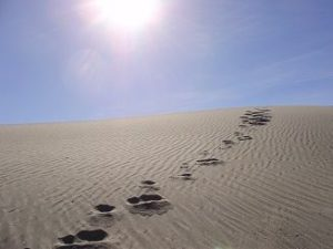 Single set of footprints in sand.