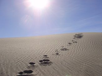 Single set of footprints in sand.