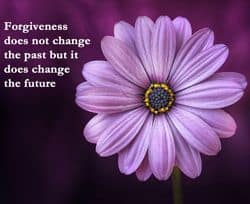 Quote - Forgiveness