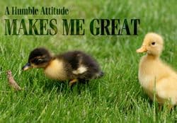 "Quote: ""Humble attitude makes me great"""