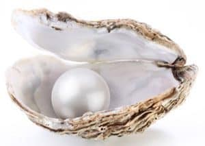 Pearl inside shell