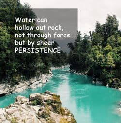 "Quote: ""Persistence - Water can hollow..."""