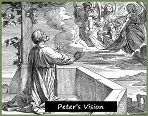 Sketch of Peter's vision