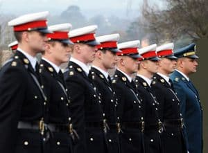 Line of Officials in Uniform