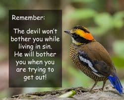 "Quote: ""Remember, the devil won't..."""