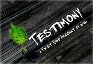 Script: Testimony