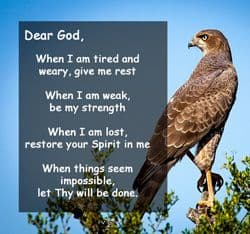 "Quote: ""Dear God, when I am tired..."""