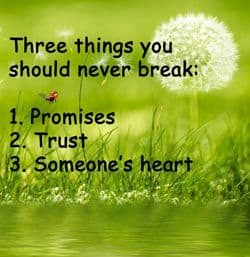 "Quote - Trust: ""Three things you should never..."""