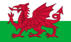 Welsh National Flag
