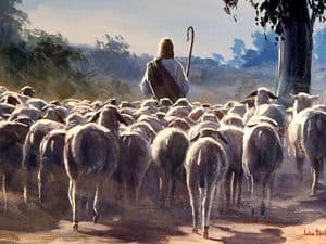 Jesus, as shepherd, leading a flock of sheep