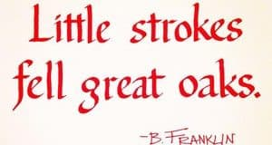 Quote: Little strokes...