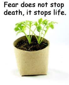 Quote: Fear does not stop death, it stops life