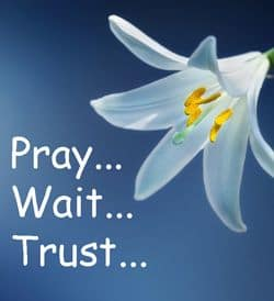 Quote: Pray, Wait, Trust