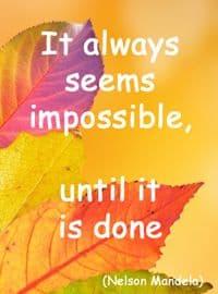 Quote: It always seems...