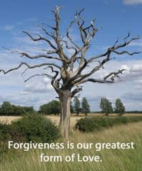 Quote: Forgiveness is...