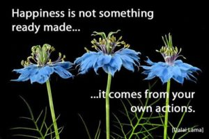 Quote: Happiness is not...