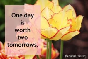 Quote: One Day is...