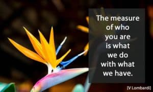 Quote: The measure of who...