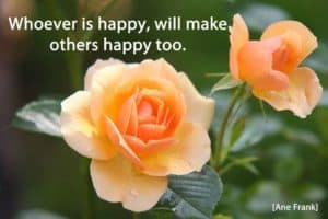 Quote: Whoever is happy...