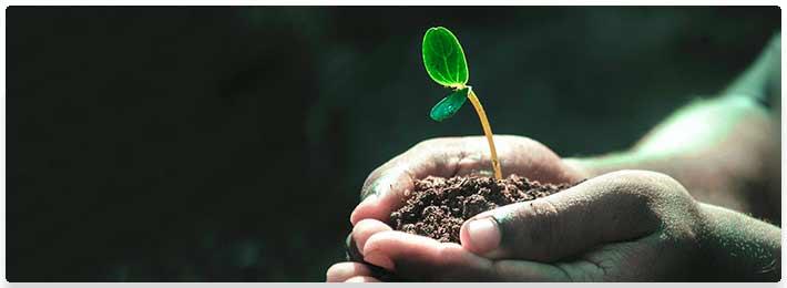 Faith & Growth